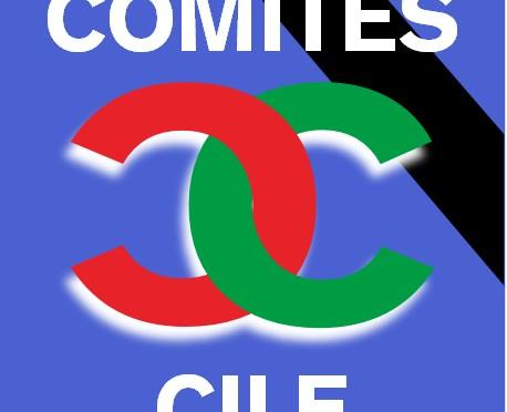 Cordoglio del Comites del Cile per la strage di Genova